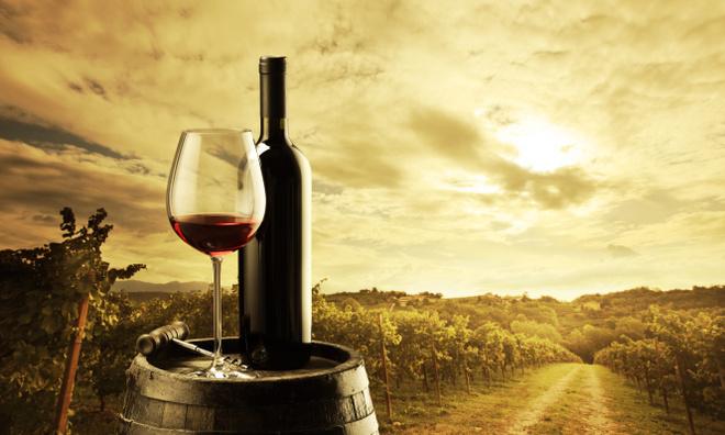 История виноделия в Бордо