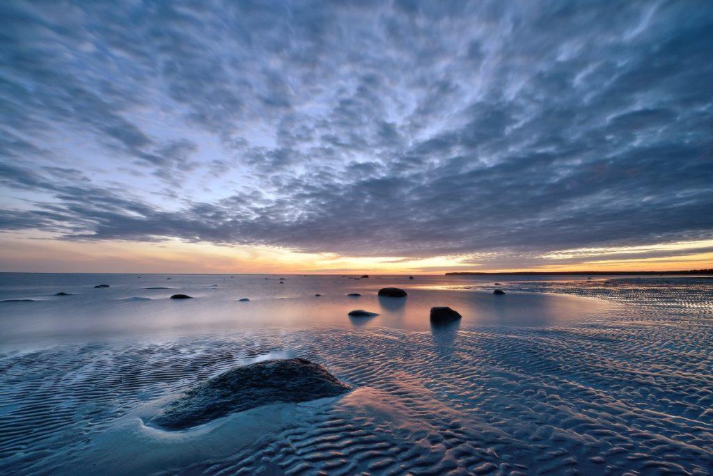 Удивительный мир Белого моря